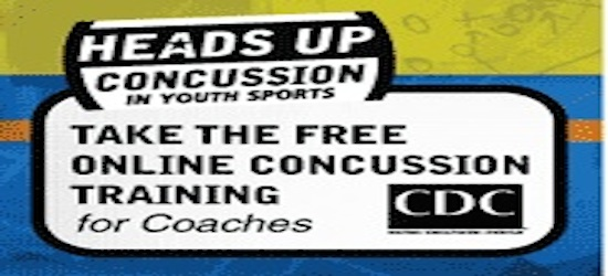 ringette concussion resource